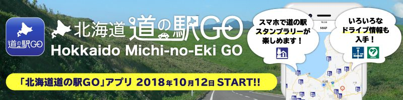 北海道道の駅GO